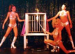 showgirls-of-magic-las-vegas-02.jpg (13319 bytes)